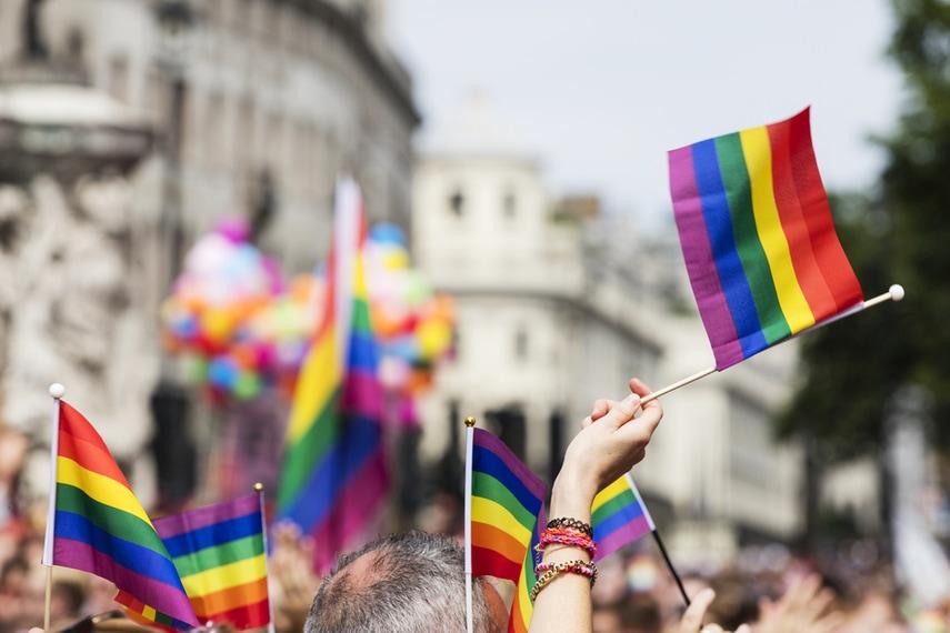 pride article